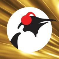 Logo de la radio Pinguin Classics