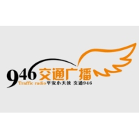 Logo de la radio 石家庄人民广播电台交通广播 FM94.6