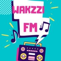 Logo of radio station WAKZZIFM