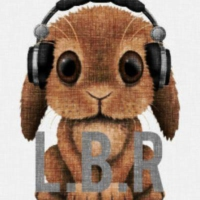 Logo of radio station L.B.R