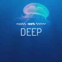 Logo of radio station 100FM - Deep
