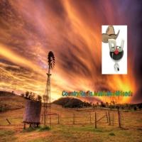 Logo de la radio Countryradio.Musicbox4friends