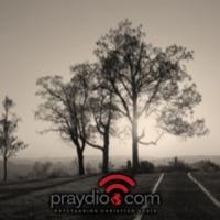 Logo de la radio praydio.com