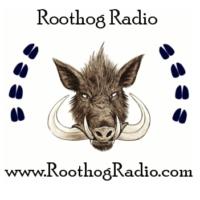 Logo de la radio Roothog Radio