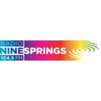 Logo de la radio Radio Ninesprings