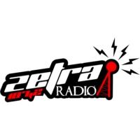 Logo of radio station Радио Зетра