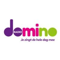 Logo de la radio Radiodomino.be
