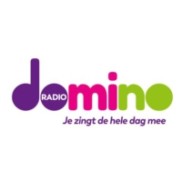 Logo of radio station Radiodomino.be