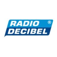 Logo of radio station Radio Decibel