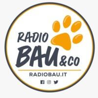 Logo of radio station Radio Bau & Co