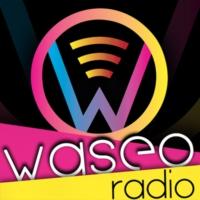 Logo of radio station WASEO