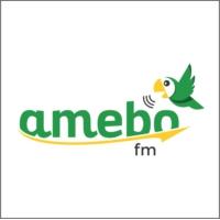 Logo of radio station Amebofm
