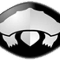 Logo of radio station IRNG RADIO