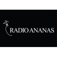 Logo of radio station Radio Ananas