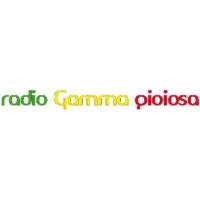 Logo of radio station Radio Gamma Gioiosa