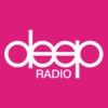 Logo of radio station Deep Radio