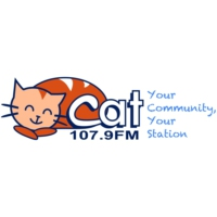 Logo de la radio The Cat 107.9