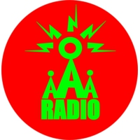 Logo de la radio Access All Aerials Radio