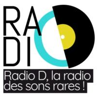 Logo de la radio Radio D