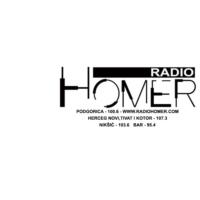 Logo de la radio Radio Homer
