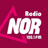 Logo de la radio Radio NOR 100.1 FM