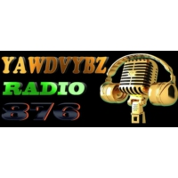 Logo of radio station YawdVybzRadio876