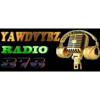 Logo de la radio YawdVybzRadio876