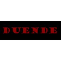 Logo de la radio Бинар - Дуенде