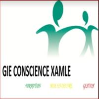 Logo of radio station Radio Conscience Xamle