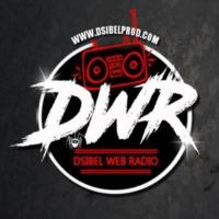 Logo de la radio Dsibel WebRadio