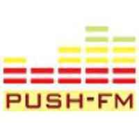 Logo de la radio Laut fm Push FM