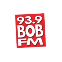 Logo of radio station WDRR 93.9 Bob FM