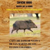 Logo of radio station cafuche radio