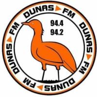 Logo of radio station DunasFM