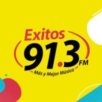 Logo de la radio XHMLS Exitos 91.3 FM