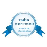 Logo de la radio Radio Ingeri