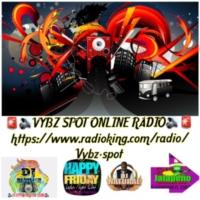 Logo de la radio Vybz Spot Online Radio