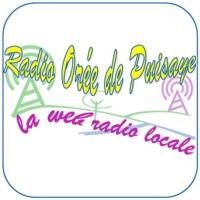 Logo of radio station Radio Orée de Puisaye