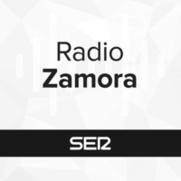 Logo of radio station Radio Zamora