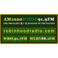 Logo de la radio WHDD 91.9FM