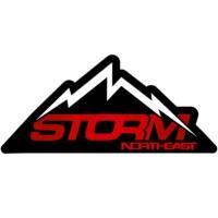Logo of radio station Storm North East