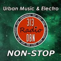 Logo of radio station 313 DBN Radio