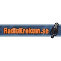 Logo of radio station Radio Krokom 101.0 MHz