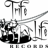 Logo de la radio TRIFELIFE