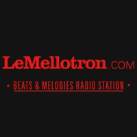 Logo of radio station Le Mellotron