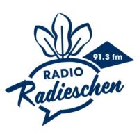 Logo of radio station Radio Radieschen 91.3 fm