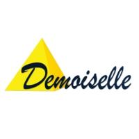 Logo de la radio Demoiselle FM