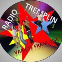 Logo de la radio Radio Tremplin