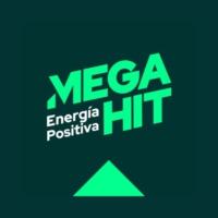 Logo of radio station MEGA HIT 100.1 FM