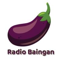 Logo of radio station Radio Baingan